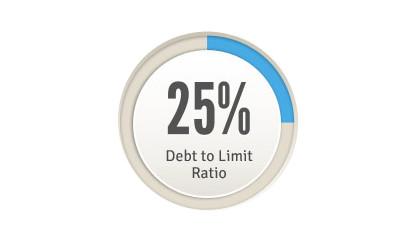 turboly-Setup Credit Limit = Secure Your Receivables